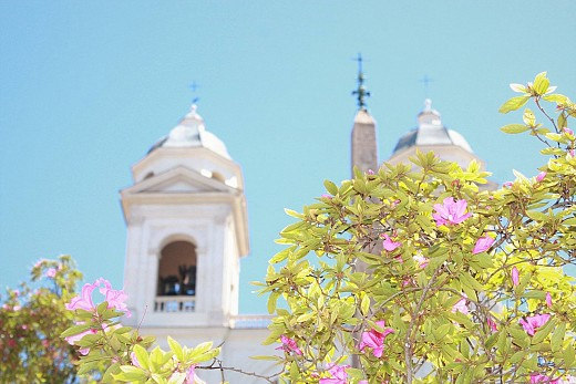 Flowers on the top of the Spanish steps