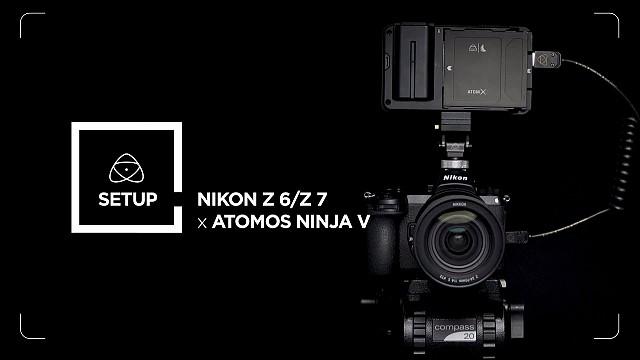 Nikon Z6 + Atomos Ninja V Фотосинтезис